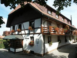 Vacation Apartment in Höchenschwand -  (# 7985)