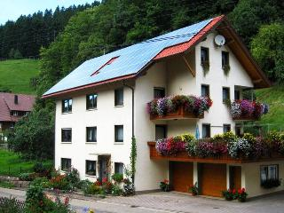 Guest Room in Bad Peterstal-Griesbach - Full length mirror, Sat / TV, with shower, toilet, hairdryer,…