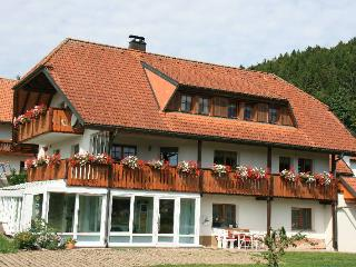 Vacation Apartment in Dachsberg - 592 sqft, 2 Bedrooms (# 8057)