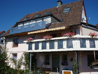 Vacation Apartment in Freudenstadt -  (# 8071)