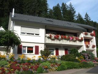 Vacation Apartment in Ottenhoefen im Schwarzwald - 667 sqft, 1 to 2 bedrooms, max. 5 people (# 8074)