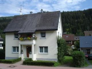 Vacation Apartment in Sankt Blasien - 377 sqft, 1 bedroom, max. 2 persons (# 8078)
