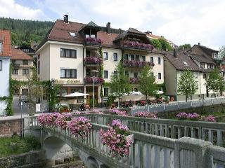 Guest Room in Bad Wildbad -  (# 8150)
