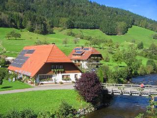 Vacation Apartment in Oberwolfach (# 8198) ~ RA64536
