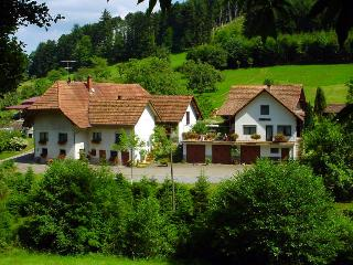 Vacation Apartment in Haslach im Kinzigtal -  (# 8287)