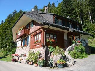 Vacation Apartment in Dachsberg - 517 sqft,  (# 8300)