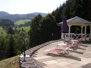 Vacation Apartment in Oberharmersbach - 603 sqft, 1 bedroom, max. 2 persons (# 8332)