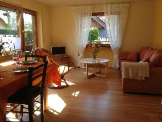 Vacation Apartment in Herbolzheim -  (# 8355)