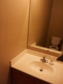 1/2 Bathroom 1 of 3 downstairs - powder room (toilet & sink only)
