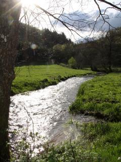 vallée du ternin