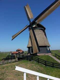 Authentic Dutch windmill nearby apartment