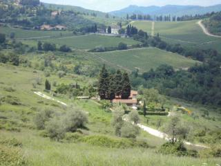 Countryhouse on hills in Florence Tuscany