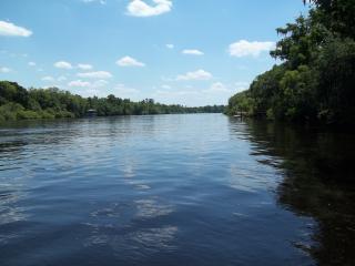 Beautiful Suwannee River Getaway, Bell