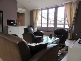 Very nice apartment in the golden triangle, Bordéus