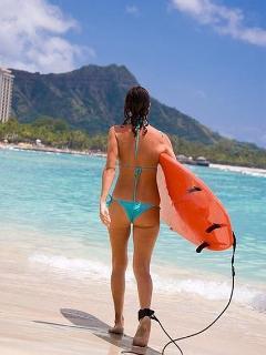 Surf Sand Sun