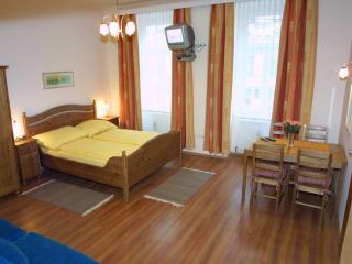 Vacation Apartment in Vienna  - central, comfortable, spacious (# 5609), Viena