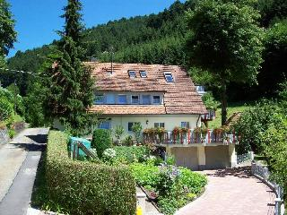 Vacation Apartment in Wolfach - 667 sqft, 1 bedroom, max. 2 People (# 7626)