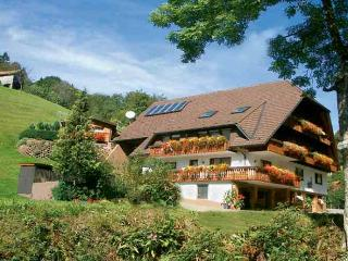 Vacation Apartment in Bad Peterstal-Griesbach -  (# 7631)