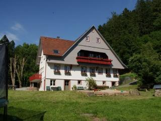 Vacation Apartment in Schenkenzell - 388 sqft, max. 4 people (# 8092)