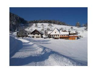 Vacation Apartment in Oberharmersbach - 538 sqft, 1 bedroom, max. 3 people (# 8394)
