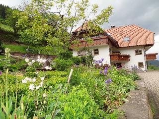 Vacation Apartment in Hofstetten (Baden) - 646 sqft, 2 bedrooms, max. 5 people (# 8395), Schramberg