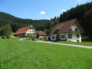 Vacation Apartment in Bad Rippoldsau-Schapbach - max. 5 people (# 8397)