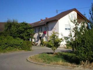 Vacation Apartment in Ihringen - maximum 4 people (# 8420)