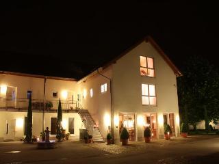 Vacation Apartment in Ihringen - 538 sqft, 1 bedroom, max. 3 people (# 8428)