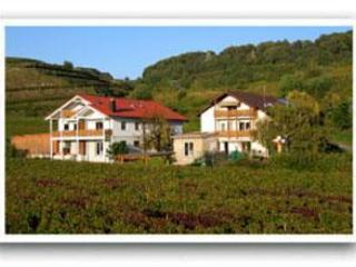Vacation Apartment in Vogtsburg - 753 sqft, 2 bedrooms, max. 4 people (# 8439), Jechtingen