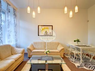 Stylish & very bright apartment, Vilna