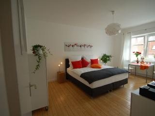 Modern and stylish studio in the center of Hanover, Hannover