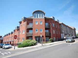City Centre Penthouse - Parking, Wifi, sleeps 6, Exeter