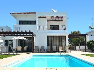 Villa Aris, Agios Theodoros