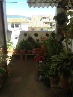 mother´s garden