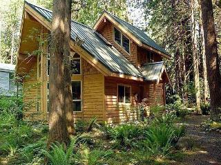 #4 - A pet-friendly cedar cabin with a hot tub!, Glacier