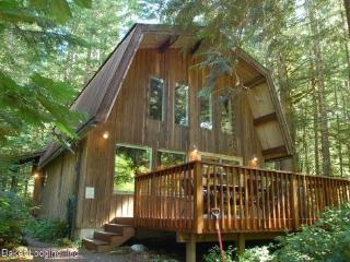 #8 Pet friendly Cabin with a Sauna + WiFi!, Glacier