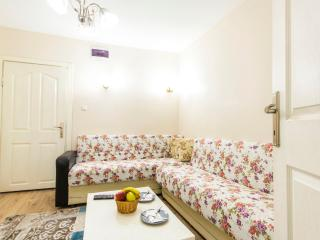 sultanahmet 1+1 apartment with blue mosque view, Istanbul