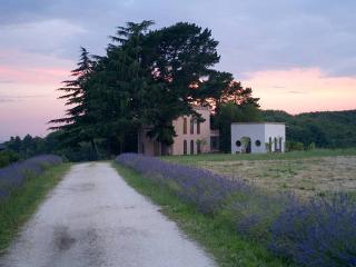 Tenuta Storica(Tuscia)TORRE DEL FALCO, Ronciglione