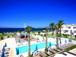 Sea And You Beachfront 1BR-7, Turgutreis