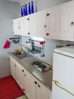Fully equipped kitchen with eletric oven, kettle, toaster, freezer...