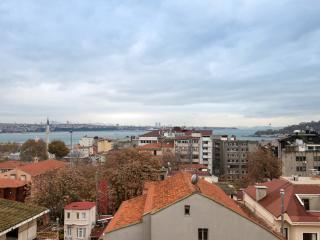 Amazing Flat with Sea View in Galata, Estambul