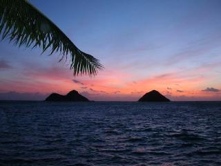 Lanikai's Best Beach House: Honu Hale Lanikai, Kailua