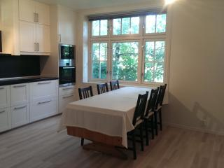 Nice, spacious apartment near the city centre, Bergen