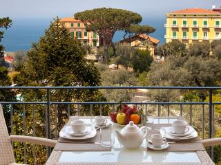 Amazing Seafront Apartment, no car needed,wifi, AC, Sorrento