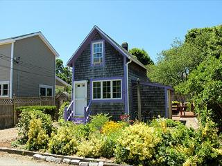 COZY,CUTE COTTAGE NEAR TOWN & BEACH., Oak Bluffs