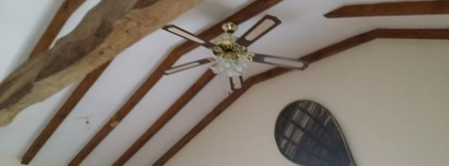 Beams and ceiling fan