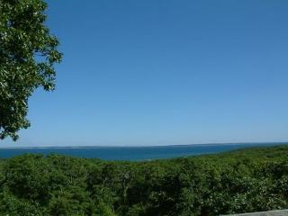 CHARMING HOME W/VIEWS OF VINEYARD SOUND & ELIZABETH ISLANDS, Chilmark