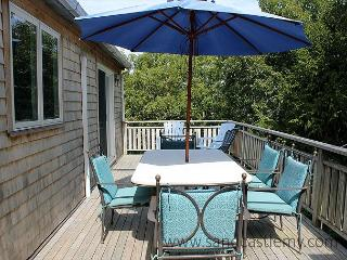 Spacious, sunny house on private and quiet half acre lot, Edgartown