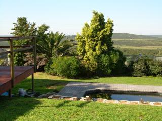 Garden view and swimming pool