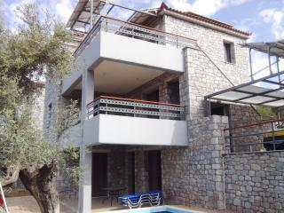 ΕΚΠΛΗΚΤΙΚΗ ΘΕΑ ΑΠΟ ΤΗΝ ΒΙΛΛΑ ΗΡΩ, Agios Nikolaos